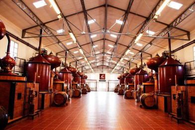 Hennessy_Distillerie_du_Peu_2__Todd_Selby