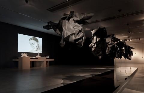 Ana Rajcevic, Animal. The Other Side of Evolution, 2012 & Kim Hagelind, Oscillons, 2011