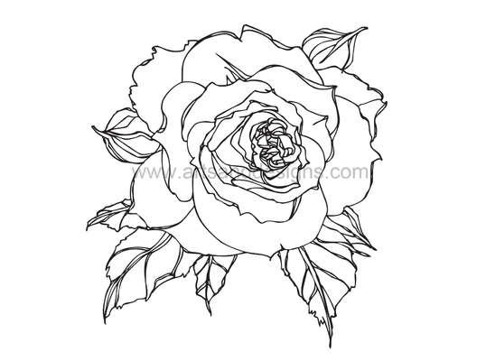 romantic rose digital stamp