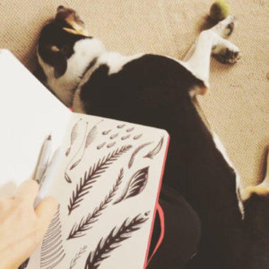paula-lukey-sketching-with-my-dog-qbert