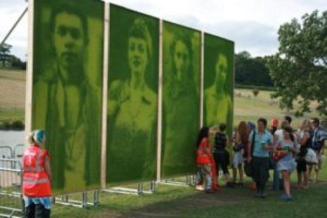 grass-photographs2-768x512