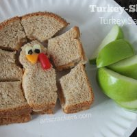 Turkey-Shaped Turkey Sandwich Lunch Idea