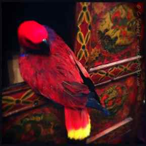 Red bird and Tibetan cabinet