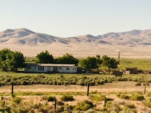 CA to Colorado on the Zephyr: Train Art and Culture