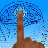 What Neuroscientists Know About The Brain And Creativity: It's Disruptive, Not Systematic