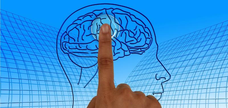 brainscience