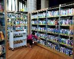 How Britain's Public Library System Was Dismantled
