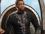 Do You Want To Spend Hours Reading Essays And Thinkpieces About 'Black Panther'?