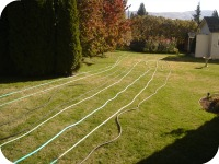 Other Matters: Hoses (Early Autumn, Part 2)