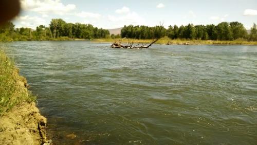 Yakima River Spring 2014