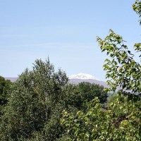 Other Matters: Mount Adams