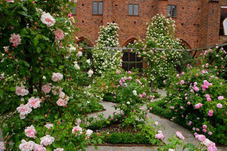 _M3L0441_Rosegarden_Monastery_Ystad_Photo_Lucas_Gohlen