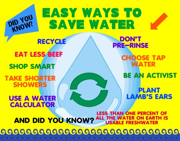 Make Science Fair Project Poster Ideas - Save Water