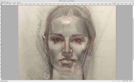 I centered the drawing on the nose, so that works. But the eyes are little too high (making the face seem longer) and her jaw on the right needs to be wider. It's amazing how these small errors can make a big difference!