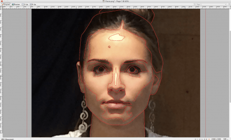 Here you can see the I've traced her features using a mouse and the pen tool in Fireworks.