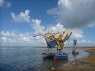 Casa frenzy beach huse Tofo Mozambique