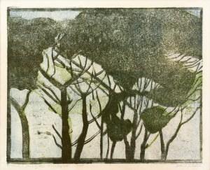 Alice Goldin - Treetops II - Artist Proof III. 1977. Woodcut.