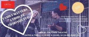 Family Matters - Gauteng Opera