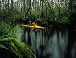 Frank in his kayak