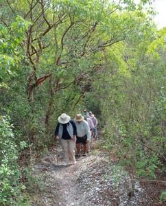 On Mound Key 24 Return Trip