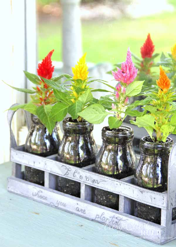 Decorating With Potted Plants Unique Planter Ideas