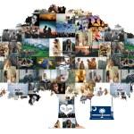 Family Tree Idea Premium Hand Crafted Photo Collage Artsy Einstein