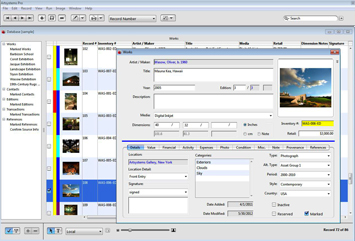 Artsystems Pro for Windows