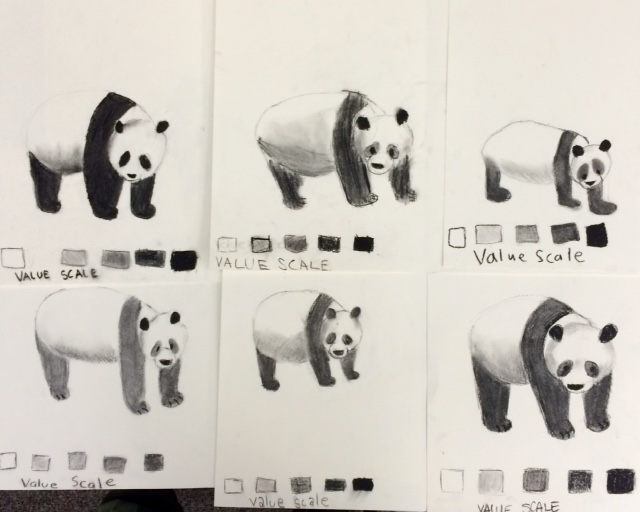 Panda Drawings- Charcoal Value Study