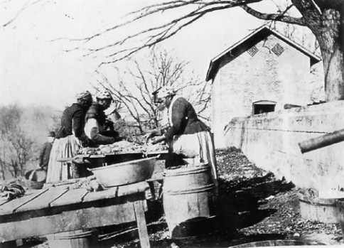 Processing pork at Wessyngton Plantation, about 1890.  Taken after emancipation, this photograph conveys the work that was performed by formerly enslaved women at Wessyngton.  Courtesy of the Washington Family private collection.