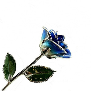 Dark Blue Two Toned And Platinum Rose Gold Roses