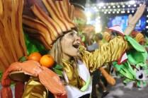 escola de samba Sao Clemente carnaval Rio de Janeiro 201403030008
