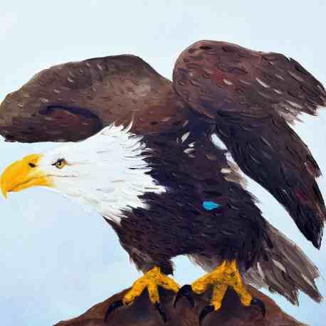 """Solitary Bird. Oil on Canvas. 24""""X30"""". NFS"""