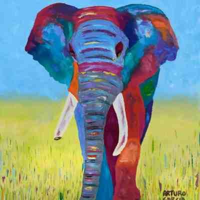 Mali Elephant. Oil. NFS