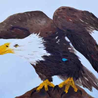 "Solitary Bird. Oil on Canvas. 24""X30"". Available."