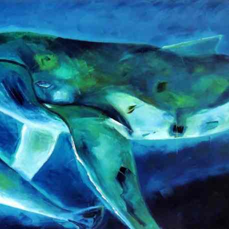 """Humpback love. Oil. 24""""X48"""". Available."""