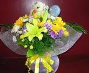 Newborn Flowers