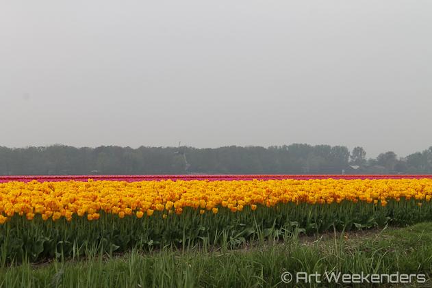 The-Netherlands-Keukenhof-Boating-View