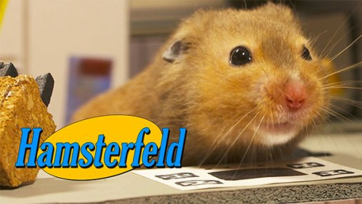 Hamsterfeld - Seinfeld with hamsters by Keith Hopkin