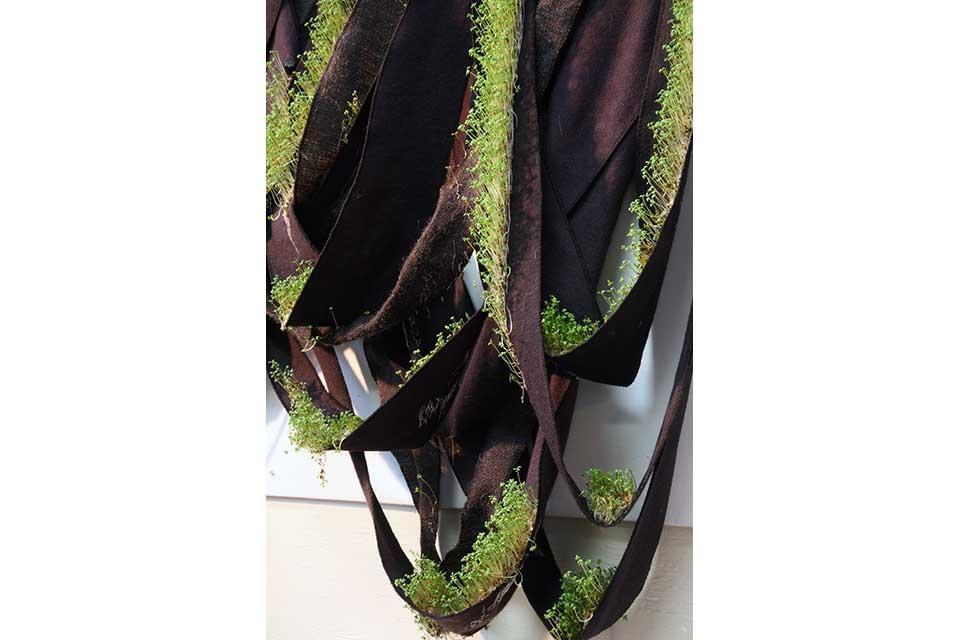 draping plant sculpture