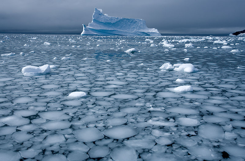 iceberg and forming sea ice