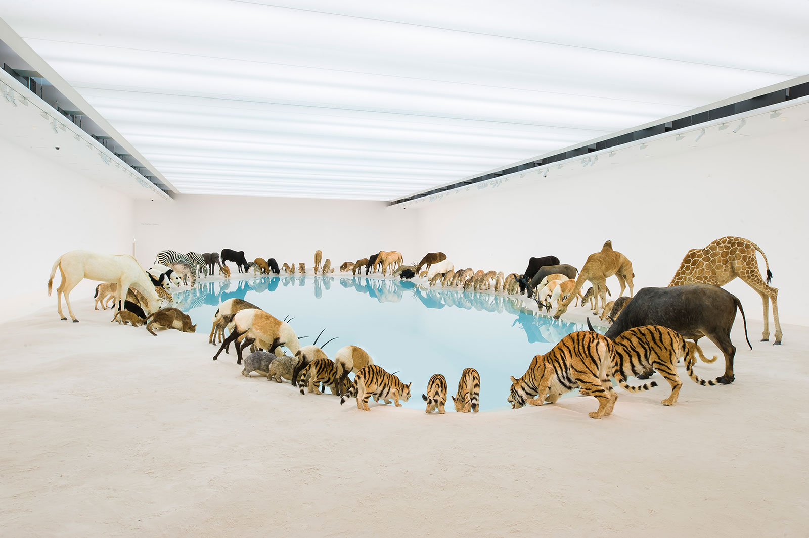 wildlife replicas drinking from blue water pool