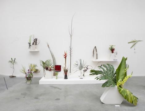 Camille Henrot - Est-il possible d'être révolutionnaire et d'aimer les fleurs? - Triennale Palais de Tokyo