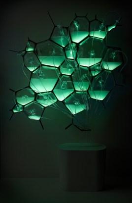 Bio-light