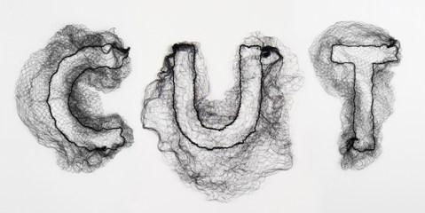 Monique Goossens - Net Typography