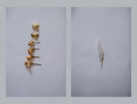 Valerio Eliogabalo Torrisi - Something about heaven