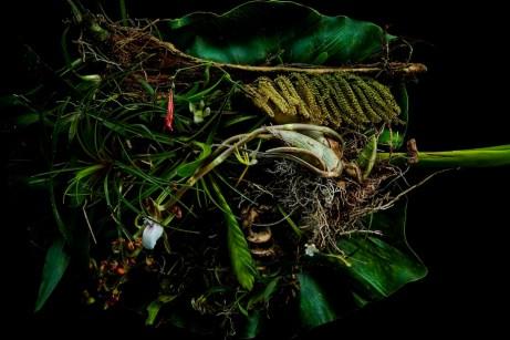 Botanical sculpture - Azuma Makoto