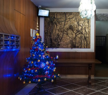 Christmas in the condo - Flaviana Frascogna