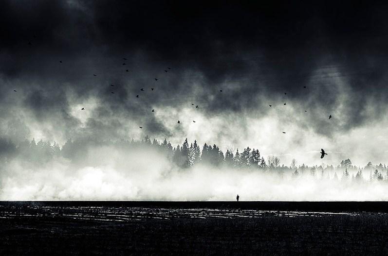 Still standing - Mikko Lagerstedt