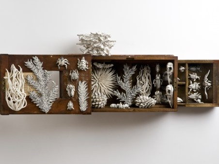 Nature Box - Katharine Morling