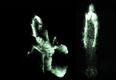 Morphosis - © MusicalZOO